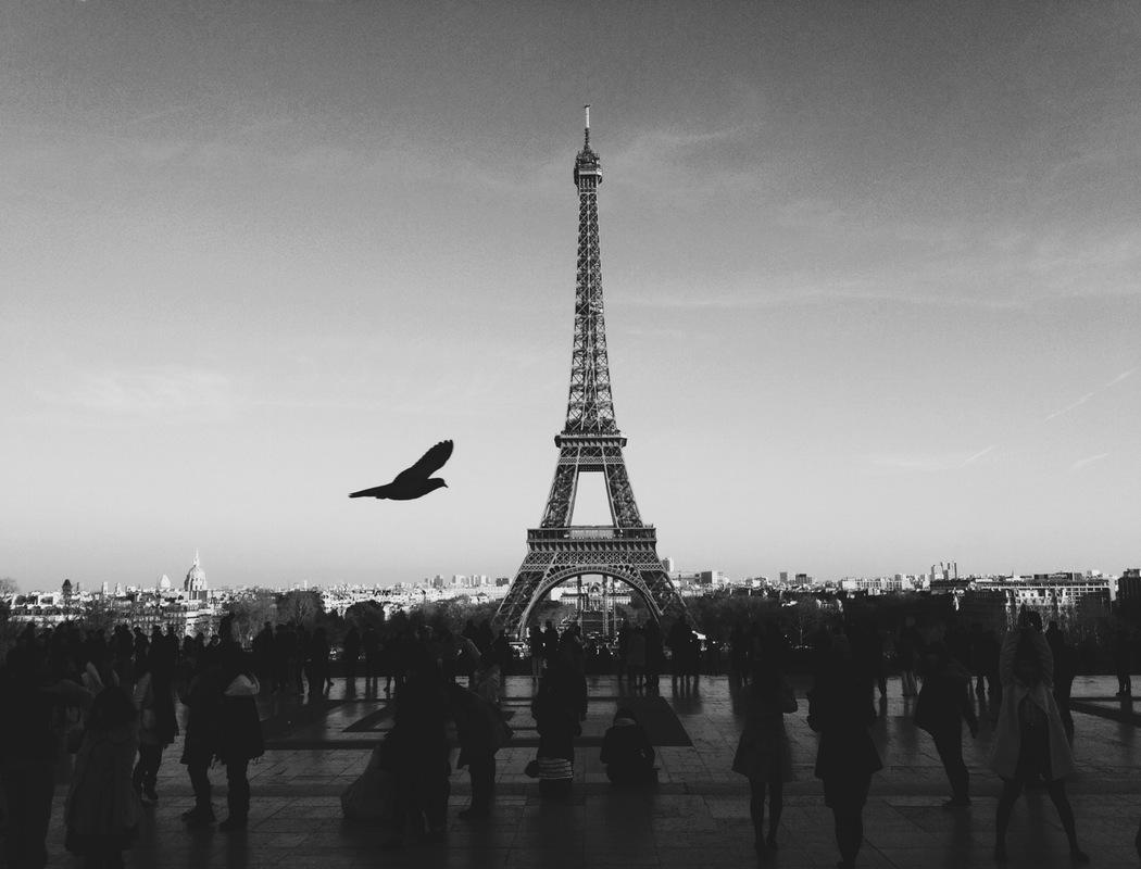 Siedem dronów znowu nad Paryżem. Francuzi panikują