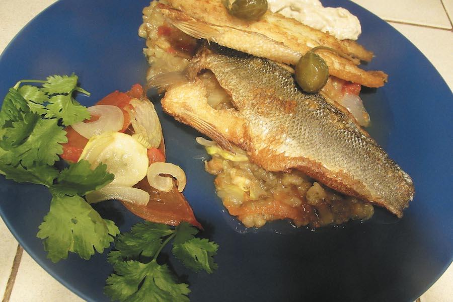 Taaka ryba