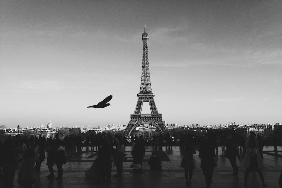Francuska publicystka: celem islamistów nie jest separatyzm, ale destabilizacja polityczna