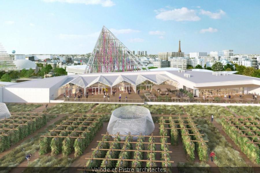 Na dachu Paris Expo powstanie największa na świecie plantacja owoców i warzyw