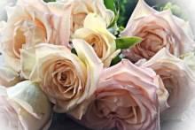 Świąteczna wyprzedaż suszonych kwiatów i dekoracji w Paryżu