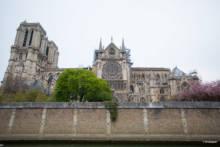 Wielki koncert dla katedry Notre Dame