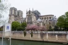 Plac przed katedrą Notre-Dame tymczasowo zamknięty z powodu skażenia ołowiem