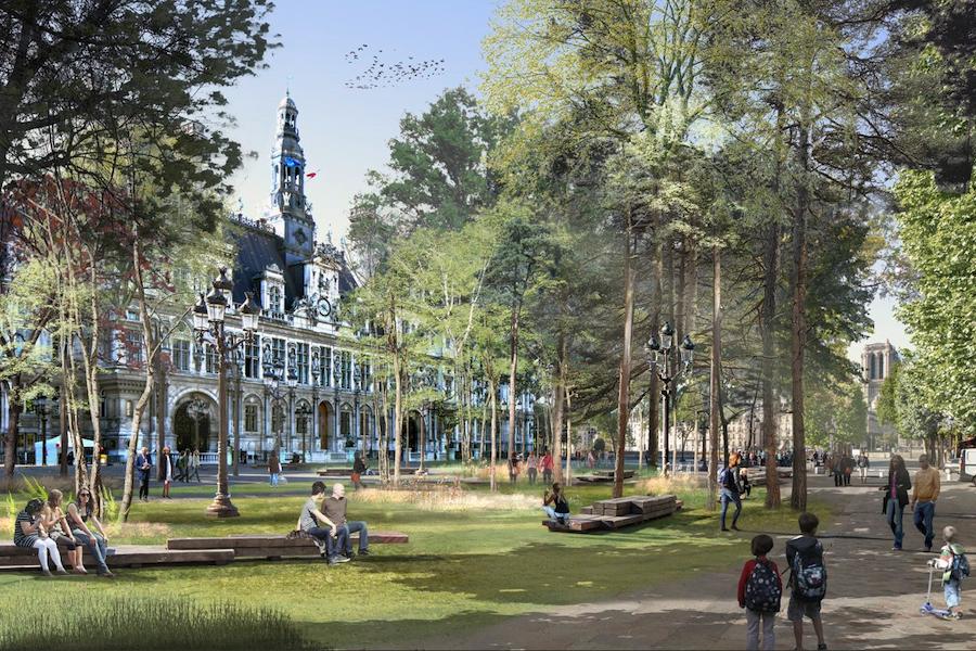 Projekt powstania miejskich lasów w Paryżu