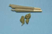Merostwo Paryża za eksperymentalną legalizacją marihuany w stolicy