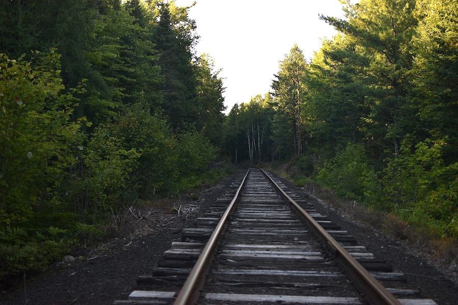 Mało znany przystanek kolejowy w środku lasu Fontainebleau