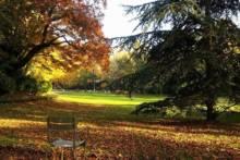 Parki i ogrody paryskie otwarte od 30 maja