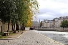 Camus, szczury i mały markiz z Saint Germain des Prés – Paryski nie-co-dziennik