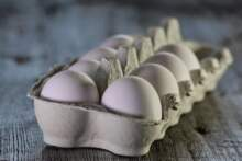 Uwaga na salmonellę! Pół miliona jajek wycofywanych z obrotu