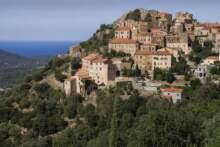 Na Korsyce wykryto ptasią grypę; wybito setki sztuk drobiu