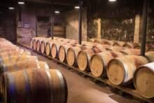 Premier ogłosił zwiększenie pomocy dla branży winiarskiej do prawie 250 mln euro