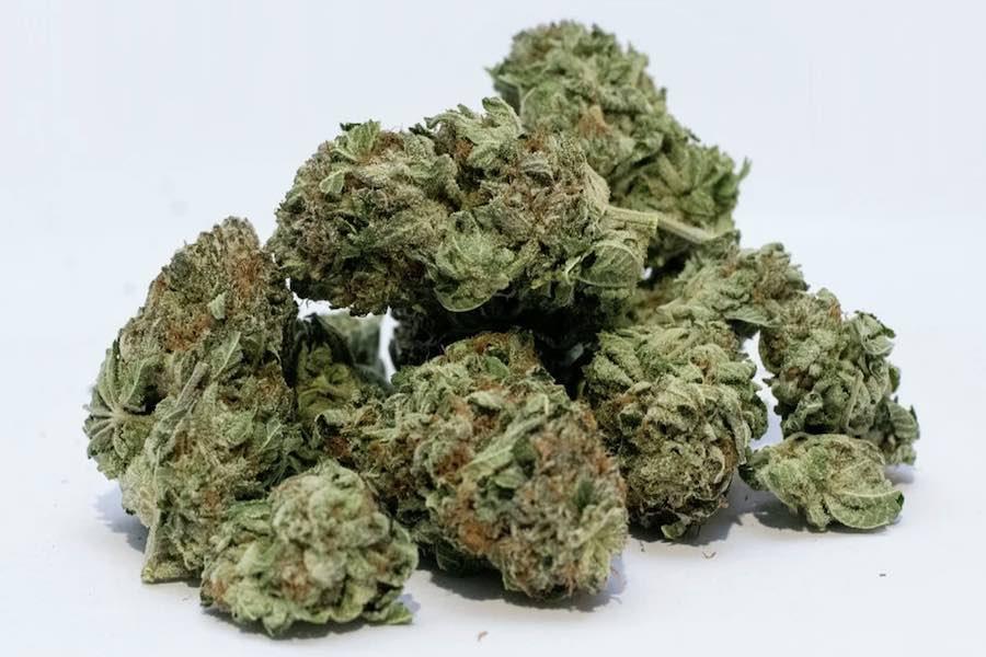 Przejęto prawie 2,6 tony marihuany za ok. 17 mln euro