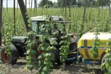 Związek rolników FNSEA wzywa bezrobotnych do pracy na roli