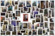 Plebiscyt na najpiękniejszą choinkę we Francji 2020 – Wyniki konkursu